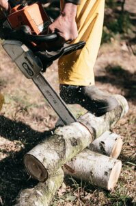 The lumberjack Competition